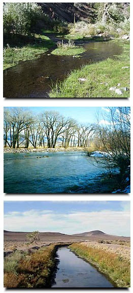 Three images of streams in Nevada