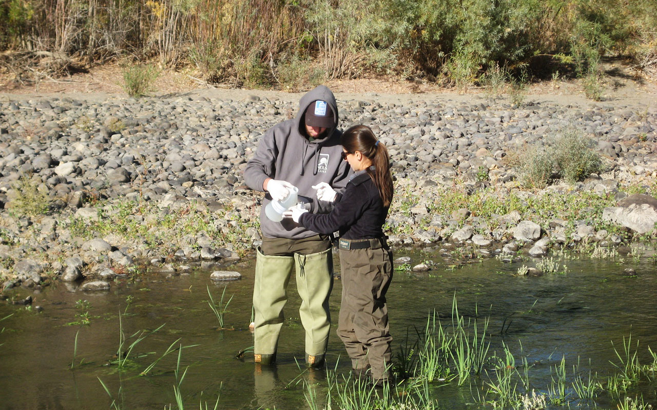 ​Two NDEP employees testing water in a river.​